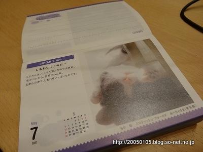 DSC03736.jpg