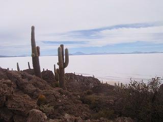 Isla de Pescado 1.jpg