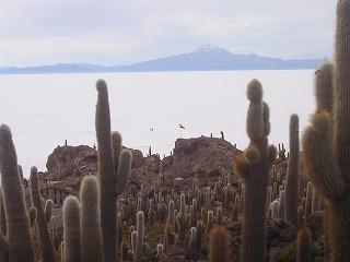 Isla de Pescado 2.jpg