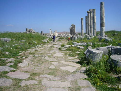 Syria シリア 2009 1600015.JPG