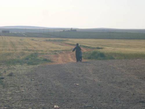 Syria シリア 2009 2530065.JPG