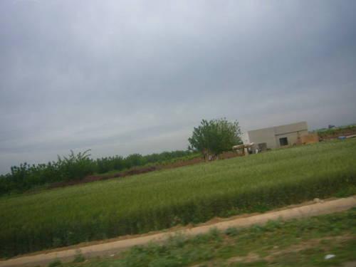 Syria シリア 2009 2870010.JPG